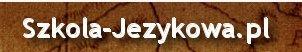 dla firm tłumaczenia, dla  firm szkolenia, kursy jezykowe dla firm, Tłumacz niemieckiego , szkoła jezyków obcych Kraków e-learing, tłumaczenia niemiecki Kazania i homilie